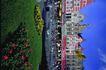 苏格兰风情0078,苏格兰风情,世界风光,花坛 殿外 景致