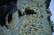 苏格兰风情0084,苏格兰风情,世界风光,石头 种类 风光