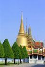 泰国风情0070,泰国风情,世界风光,金塔 群立 树冠