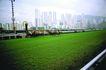 亚洲旅游0060,亚洲旅游,世界风光,绿色 草地 市容