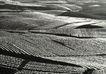中国民间风情0190,中国民间风情,世界风光,梯田 种植 食物