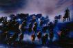 中国民间风情0199,中国民间风情,世界风光,放牧 牛群 放牧人