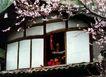 中国民间风情0202,中国民间风情,世界风光,阁楼 红梅 屋顶