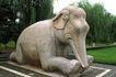 中国雕刻0042,中国雕刻,中华图片,大象 草坪 柳条