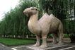 中国雕刻0048,中国雕刻,中华图片,骆驼 树枝 绿地