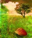 音乐幻想0047,音乐幻想,艺术,绿草 枯叶 树