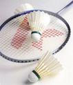 体育用品0491,体育用品,运动,