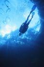 健康休闲0179,健康休闲,运动,海底仰视 全副武装的潜水员 脚蹼宽大