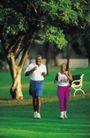 体育锻炼0162,体育锻炼,运动,减肥  草地  休闲椅