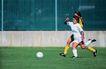 足球0178,足球,运动,女子足球 拼抢中 绿荫地