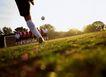 足球0185,足球,运动,