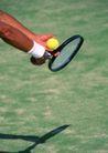 激情网球0048,激情网球,运动,黄色的网球