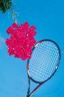 激情网球0070,激情网球,运动,鲜花 球拍 天空