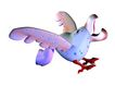 3D动物图案0114,3D动物图案,漫画卡通,鸟叫 飞翔 五颜六色