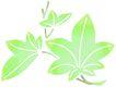 彩绘0098,彩绘,漫画卡通,绿藤 藤条 编织