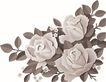 彩绘0121,彩绘,漫画卡通,牡丹 红牡丹 国花 彩绘 矢量图