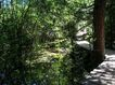 中华山水0209,中华山水,中国图片,阴暗 树荫 林间小道