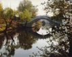 中华山水0210,中华山水,中国图片,拱桥 河流 桂花
