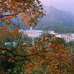 中华山水0243,中华山水,中国图片,红叶 山谷 村庄
