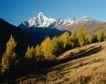 中华山水0250,中华山水,中国图片,树影 山坡 枯草