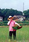 民俗人物0088,民俗人物,中国图片,