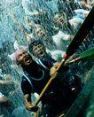 中国风情0308,中国风情,中国图片,比赛 船桨 龙船