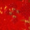 中国结0086,中国结,中国图片,背景 红色 感染