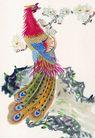 吉祥鸟0017,吉祥鸟,中国图片,长羽 拖地 石涯