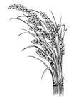 古代图案花纹0071,古代图案花纹,中国图片,小麦 弯曲 一大撮