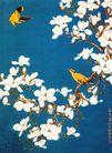 中国现代花鸟0181,中国现代花鸟,山水名画,花枝 飞鸟