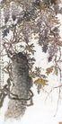 中国现代花鸟0198,中国现代花鸟,山水名画,山水画 墨 名画