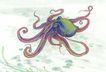 水下动物画0005,水下动物画,山水名画,乌贼 触角 卷起