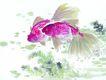 水下动物画0021,水下动物画,山水名画,金鱼 鱼鳍 游水