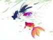 水下动物画0022,水下动物画,山水名画,鱼缸 观赏 鱼类