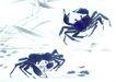 水下动物画0030,水下动物画,山水名画,海洋 水下动物 水墨画