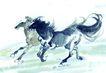 中国动物画0057,中国动物画,山水名画,马 奔腾 千里马