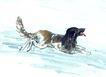 中国动物画0085,中国动物画,山水名画,形象 休息 动物
