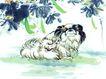 中国动物画0087,中国动物画,山水名画,可爱 情趣 生活