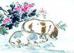 中国动物画0088,中国动物画,山水名画,品味 花枝 阴凉