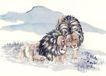 中国动物画0109,中国动物画,山水名画,狮子 两只 相依畏