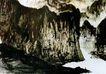 傅抱石作品集0099,傅抱石作品集,中国传世名画,毛笔 写生 浓淡