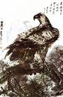 黄胃作品集0069,黄胃作品集,中国传世名画,苍鹰 树枝 铁嘴