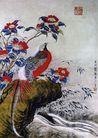 刘海粟作品集0077,刘海粟作品集,中国传世名画,彩色 山鸡 羽毛