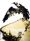 潘天寿作品集0066,潘天寿作品集,中国传世名画,苍鹰 岩石 双翅