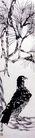 齐白石作品集0099,齐白石作品集,中国传世名画,苍鹰 名画 传世