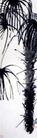 齐白石作品集0121,齐白石作品集,中国传世名画,