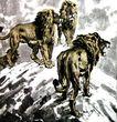 徐悲鸿作品集0062,徐悲鸿作品集,中国传世名画,狮子 凶猛 森林