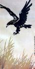 徐悲鸿作品集0091,徐悲鸿作品集,中国传世名画,苍鹰 草地 气势