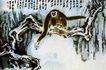 张大千作品集0004,张大千作品集,中国传世名画,猴子 长臂 握枝