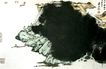 张大千作品集0044,张大千作品集,中国传世名画,名作